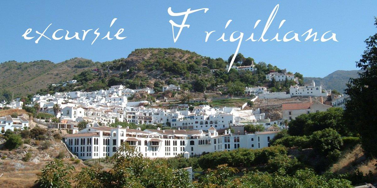 excursie Frigiliana